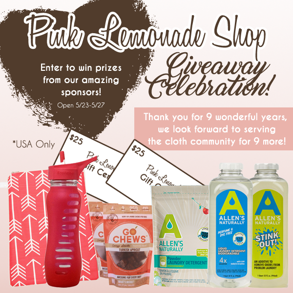 Pink Lemonade Shop 9 Year Anniversary Celebration & Giveaway